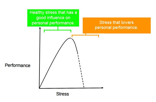 Stress%20%26%20performance.jpg
